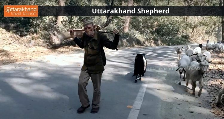 Uttarakhand .jpeg
