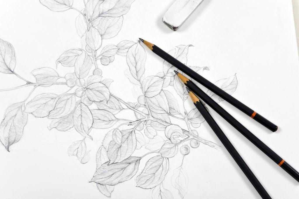 Hình ảnh bản vẽ phác họa than chì của Getty Images |  Tìm hiểu các nguyên tắc cơ bản của vẽ bút chì than chì với Lee Hammond
