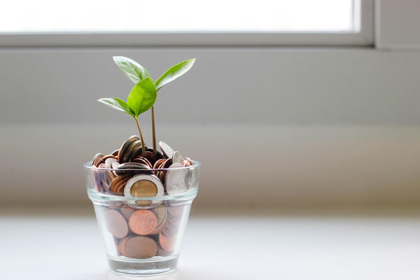 saving coins in a pot