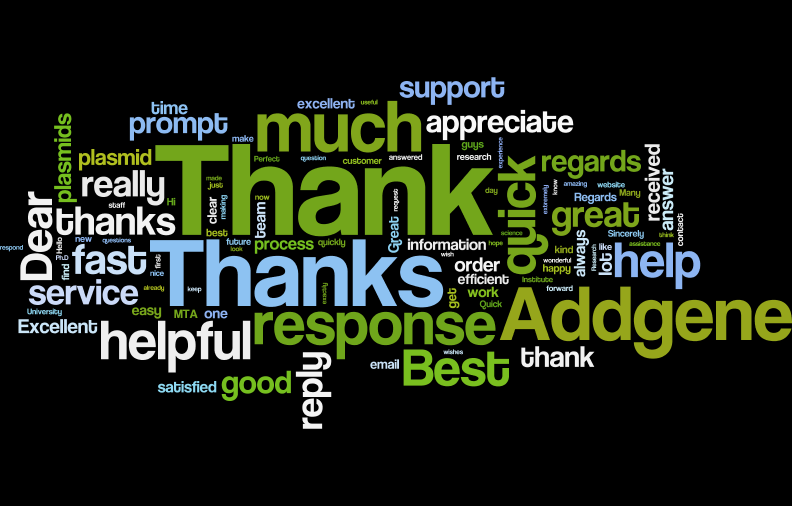 wordle 6.png