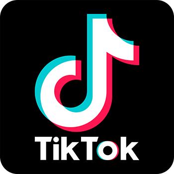 Tải video từ TikTok-Download video TikTok online - Ship Hàng Nhanh