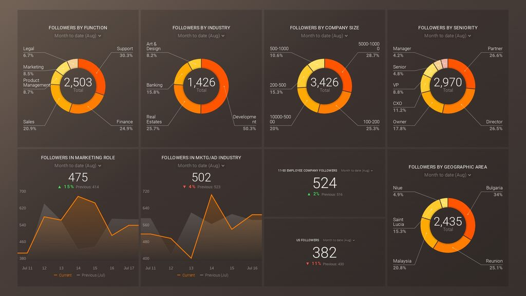 linkedin demographics overview dashboard