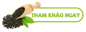 5 Lưu ý khi uống trà Đinh Tân Cương mà bạn nên chú ý - Hướng dẫn cách bảo quản trà Đinh đúng cách và hiệu quả