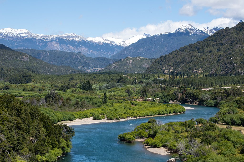 bosques del sur de chile
