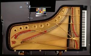 dan-piano-steinway-1