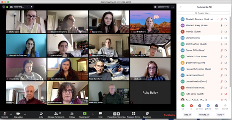 Zoom video meeting screenshot