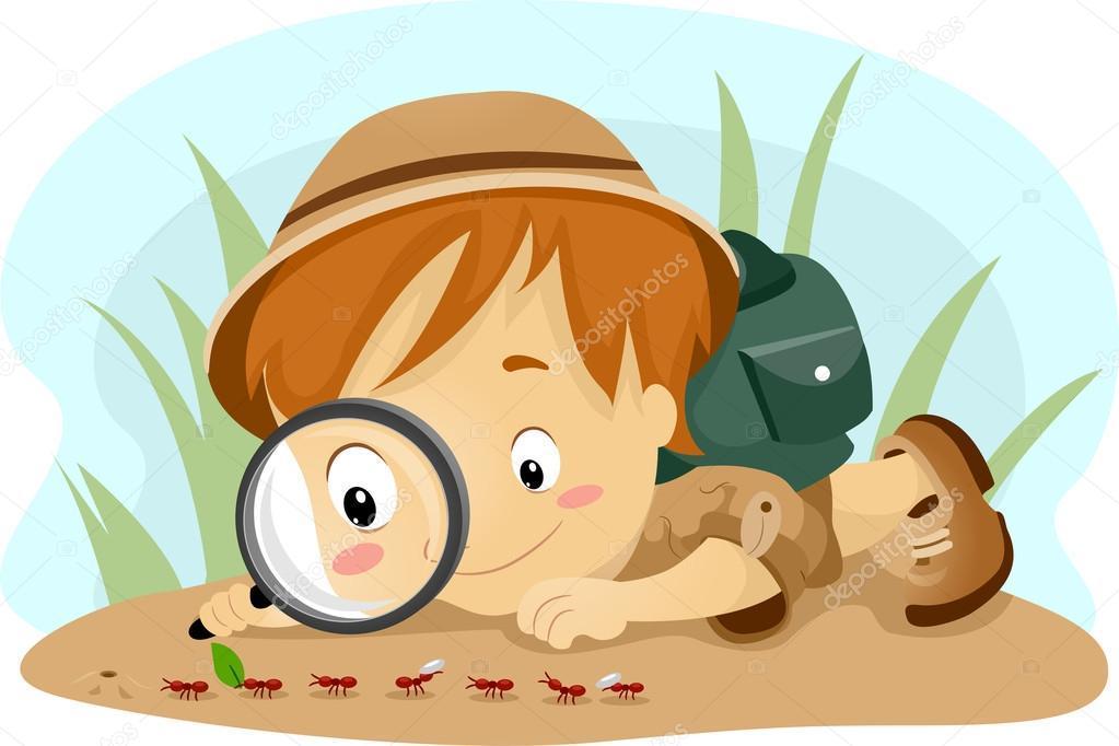 http://tom-luchschool.edu.tomsk.ru/wp-content/uploads/2018/03/depositphotos_10118126_stock_photo_kid_observing_ants.jpg