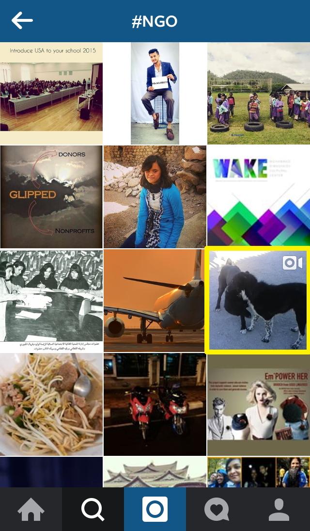 0210 instagram-tagngo.jpg
