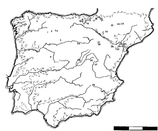 Mapa de yacimientos mesolíticos de la península ibérica: 1: Veiga do Mouin; 2: La Peñica; 3: Uña; 4: Espertín; 5: El Palomar; 6: La Dehesa; 7: Níspero; 8: Berniollo; 9: Fuente Hoz; 10: Socuevas; 11: Montico de Charratu; 12: Mendandia; 13: Kanpanoste; 14: Kanpanoste Goikoa; 15: Atxoste; 16: La Peña; 17: Legintxiki; 18: Abauntz; 19: Aizpea; 20: Zatoya; 21: Padre Areso; 22: Chaves; 23: Forcas I; 24: Forcas II; 25: Peña 14; 26: Estebanvela; 27: Vergara; 28: Abrigo del Diablo; 29: Baños de Ariño; 30: Angel; 31: Botiquería; 32: Secans; 33: Pontet; 34: Costalena; 35: Capón; 36: Buendía; 37: Verdelpino; 38: Molino Vadico.