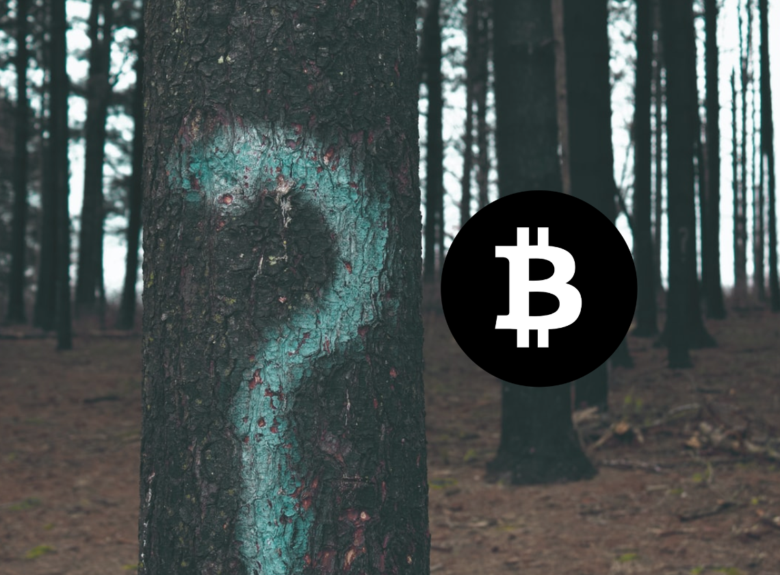 Bitcoin vs Bitcoin Cash: Which performs better? 1