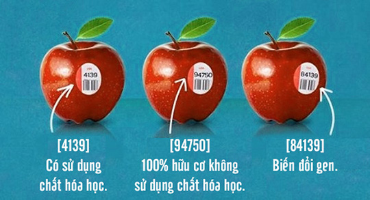 in-bao-bi-nhan-mac-1.jpg