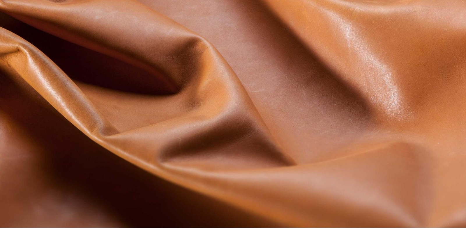 Appearance of protein leather