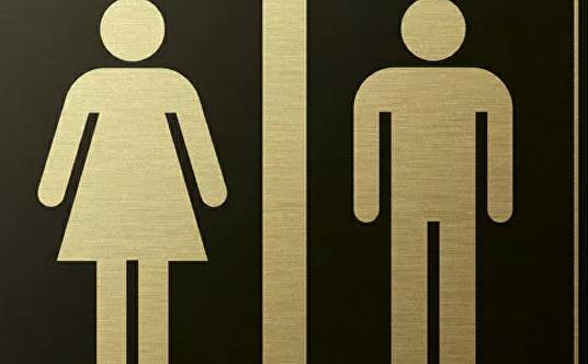 """Во Всемирной туалетной организации сообщили про """"кризис"""" в России"""