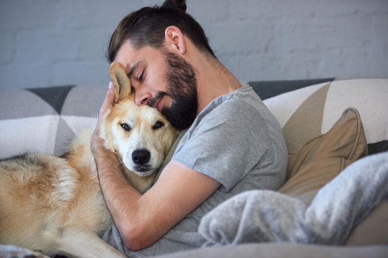 amistad perros1 0