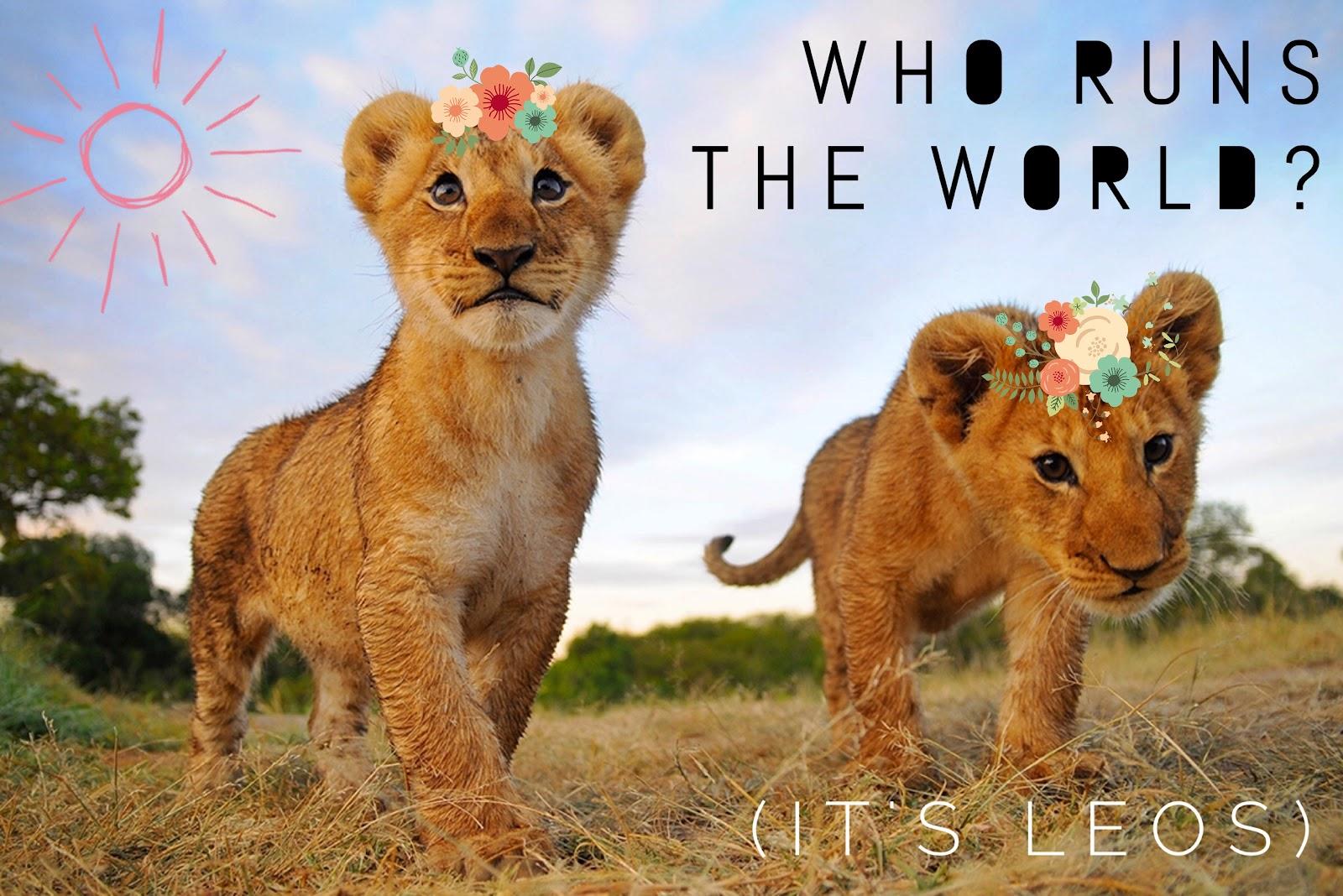 Future Leos. (image credit: Kelsey Skrinde)