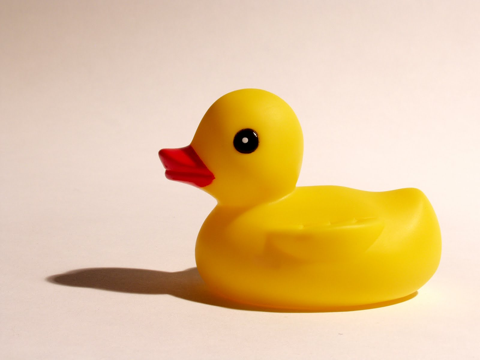 Perfect your Presentation with a Rubber Duck | eSlide