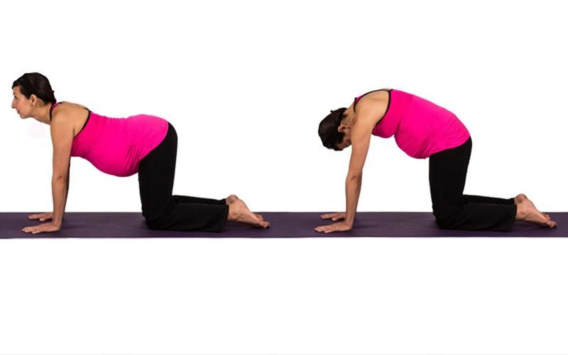 cow pose to treat hip pain while pregnant