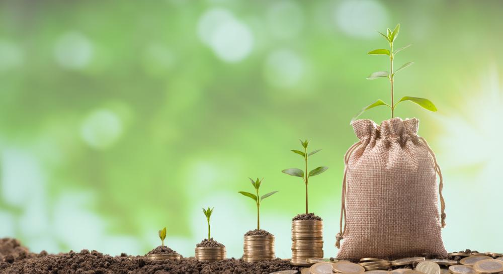 Poupança Rural foi a origem de 34% dos recursos aplicados em crédito rural até o momento. (Fonte: Shutterstock/daphnusia/Reprodução)