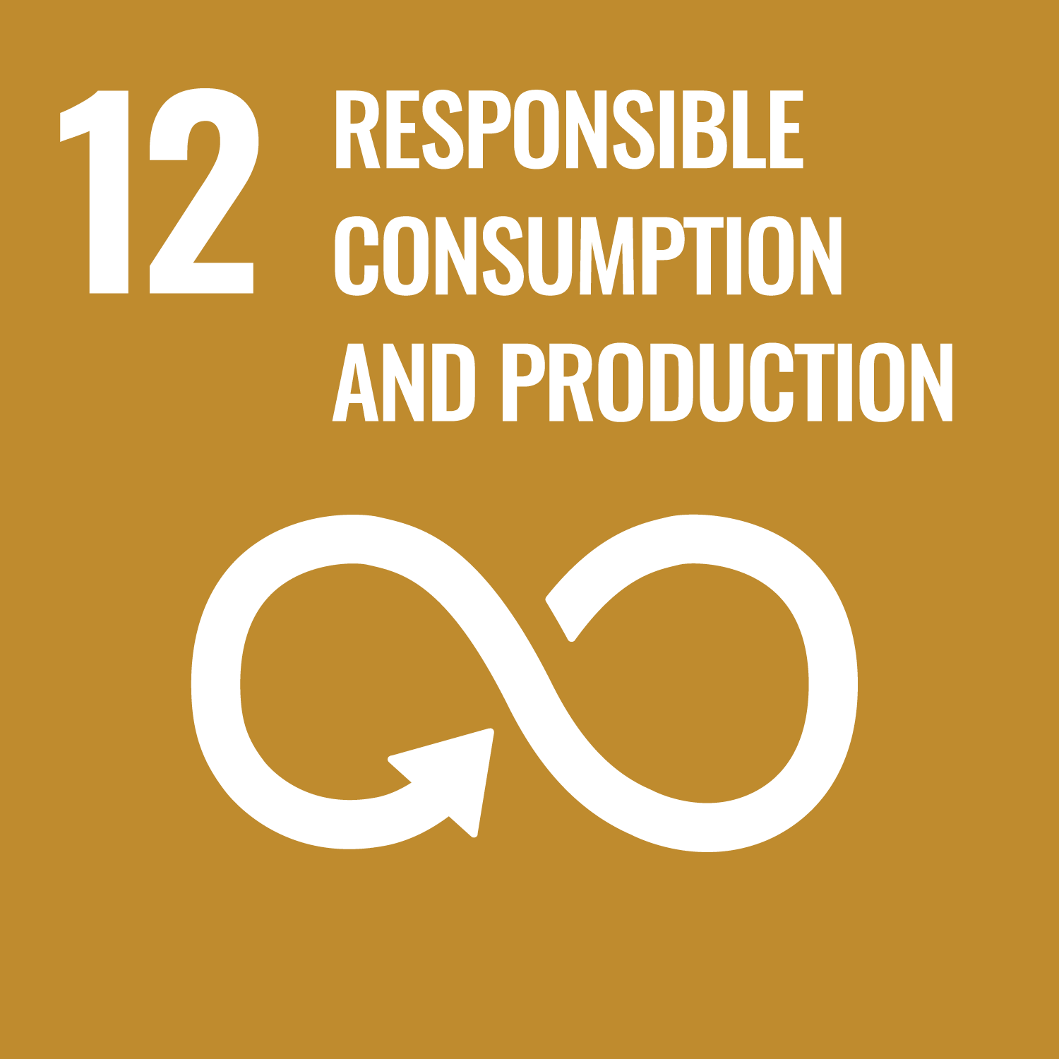 Sustainable Development Goal 12. Ensure sustainable consumption and production patterns.