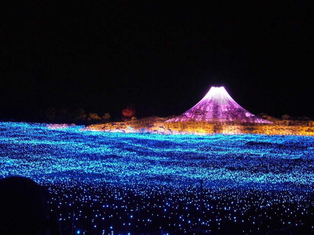 Lễ hội ánh sáng Tokyo