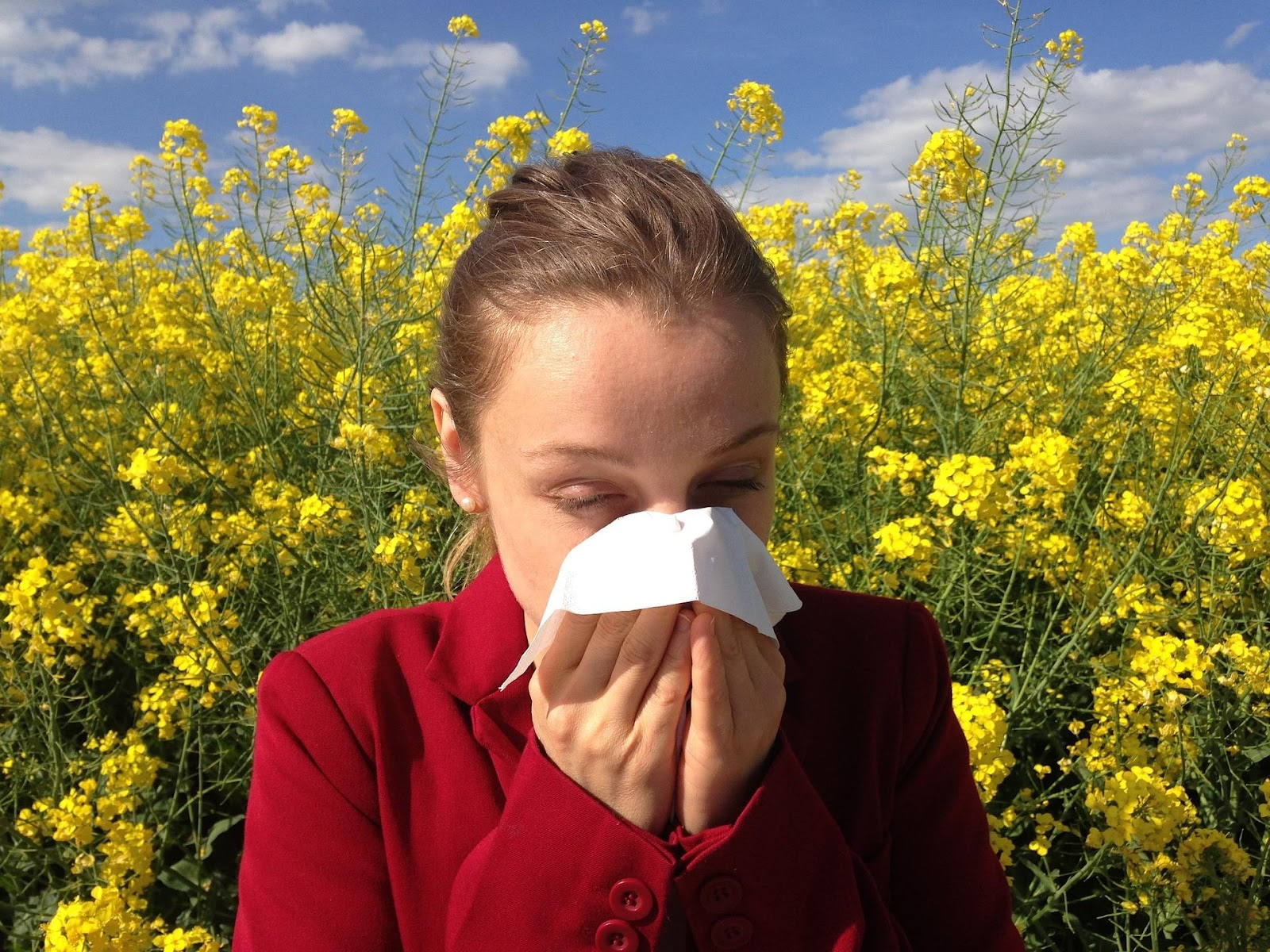 What Causes Allergies to Develop?