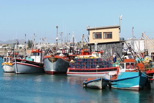 Lamberts bay boats