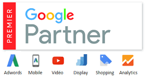 Image result for google premier partner logo