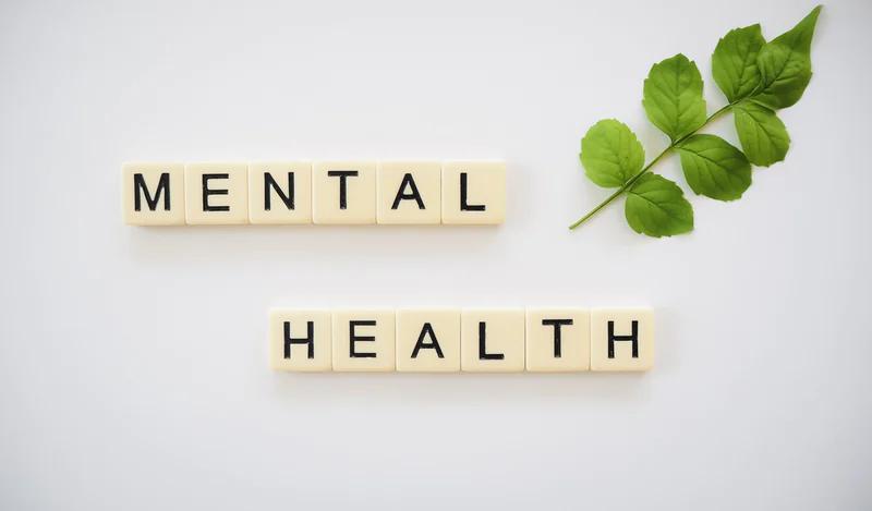 Dorset Mental Health Forum (A  comprehensive guide)