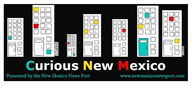Curious NM Logo.png