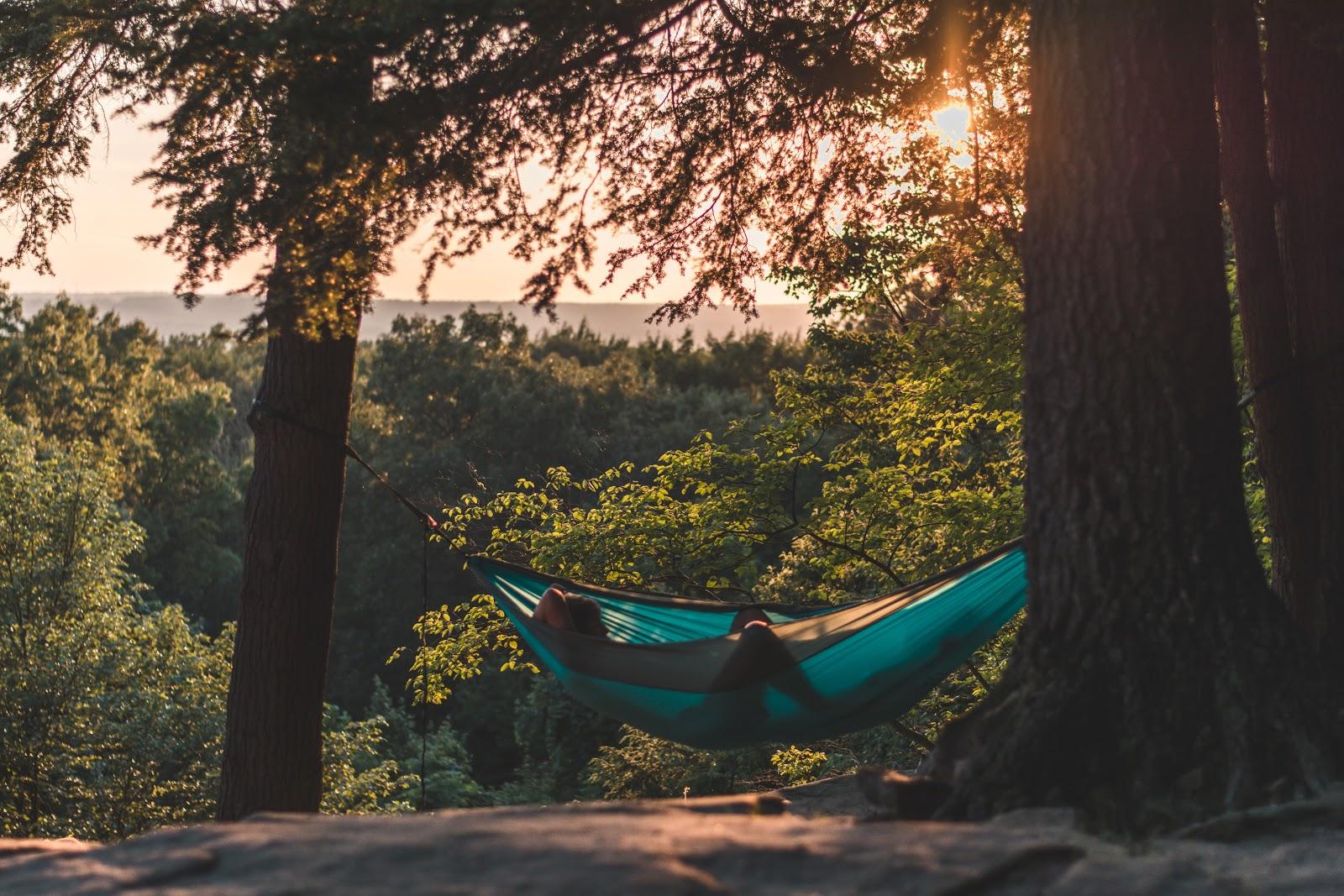 tưởng tượng nằm trên vỏng trong rừng để thức dậy tỉnh tảo đúng 5 giờ sáng