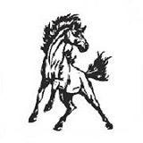 Cairo-Durham Mustang