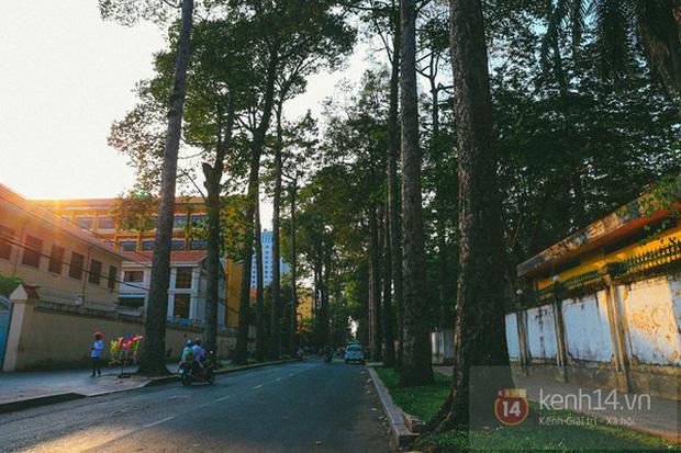 Báo Tây so sánh: Hà Nội - Sài Gòn, du lịch ở đâu cũng thú vị! - Ảnh 17.