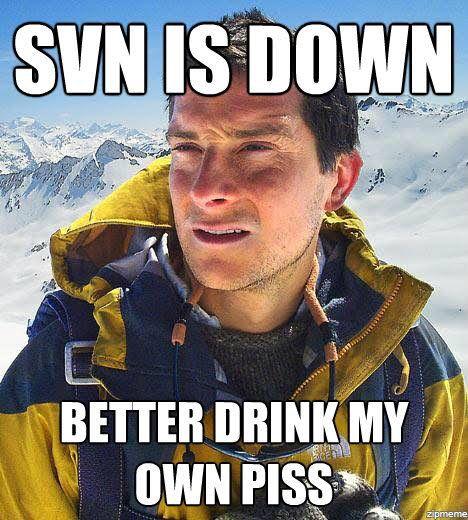 svn is down meme