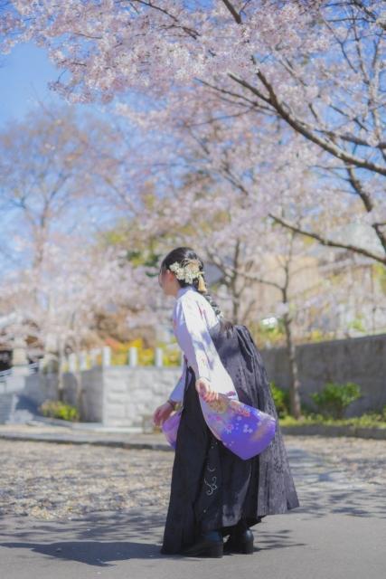 東京国際大学の卒業袴のイメージ