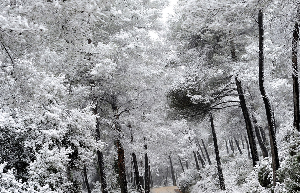 Mejores fotos de naturaleza 8