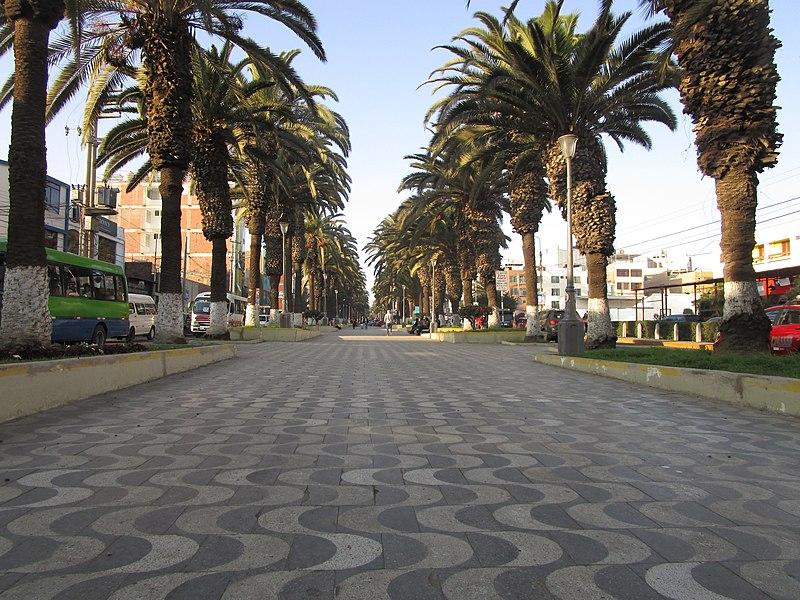 Transporte Flores nace en Tacna