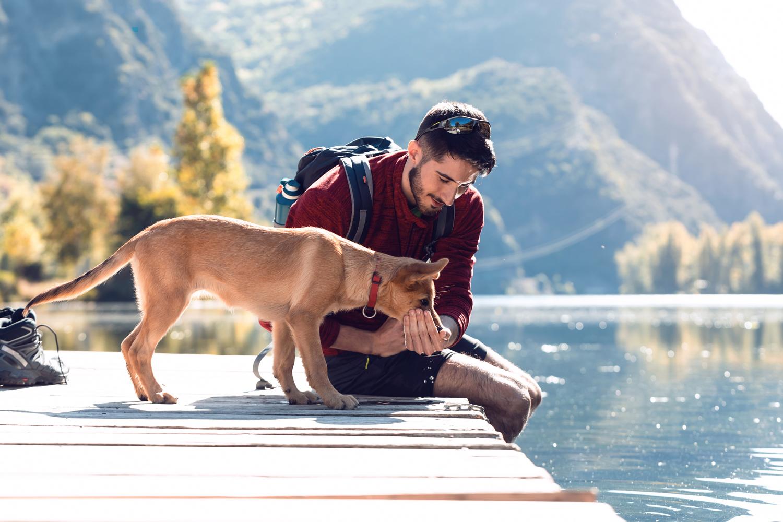 Escapada con perro