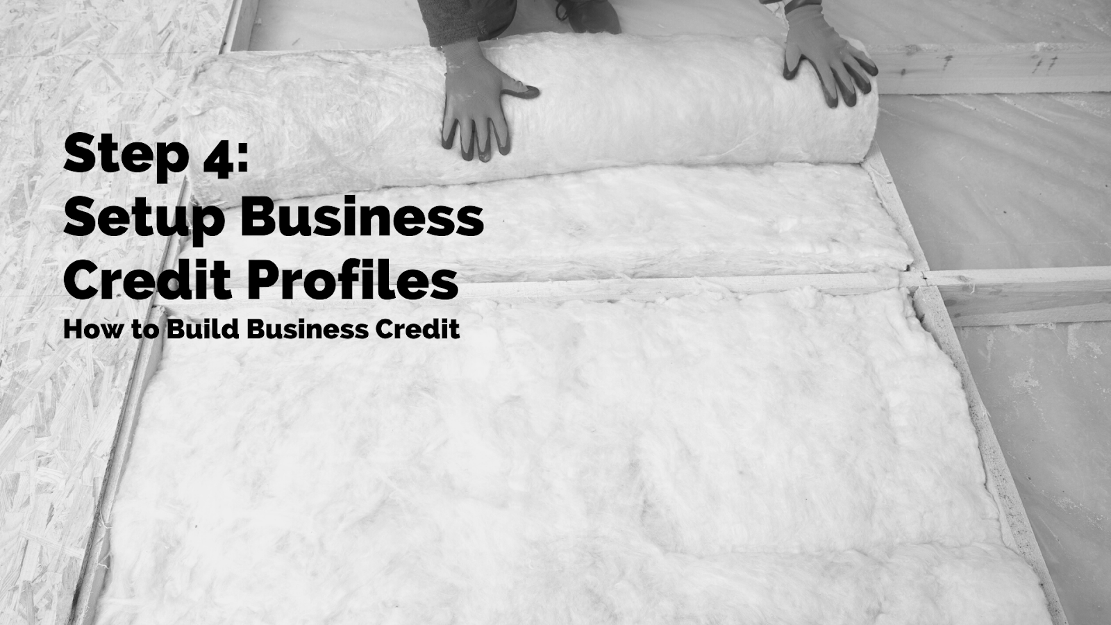 4. Setup Business Credit Profiles