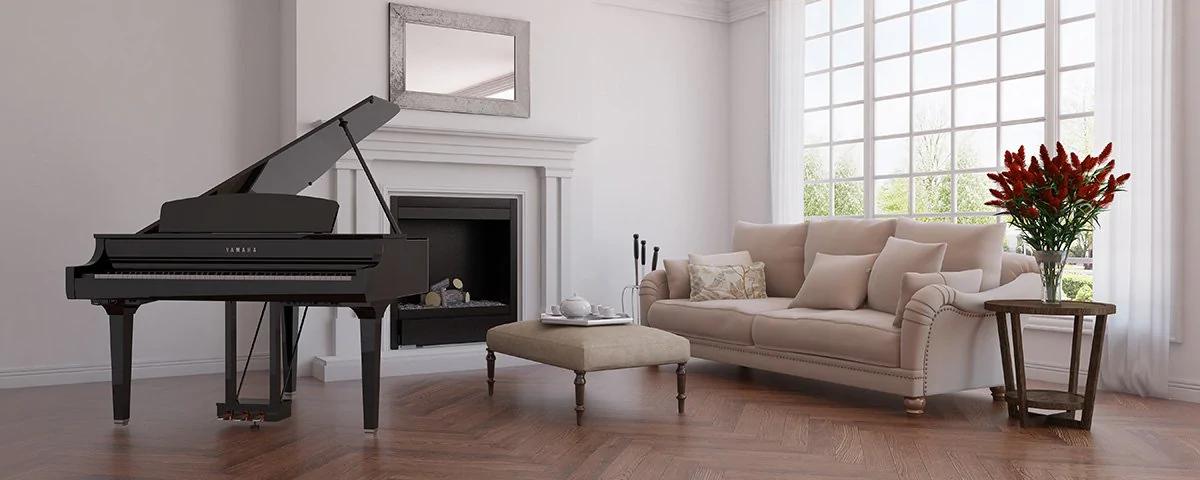 mua đàn piano ở hà nội