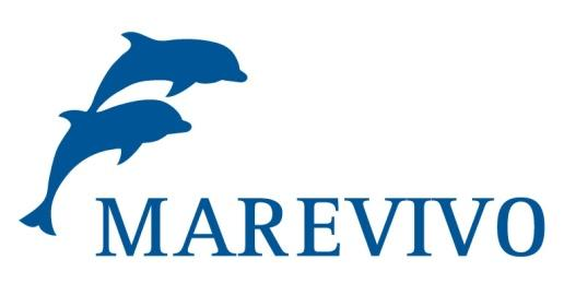 Logo MV nuovo