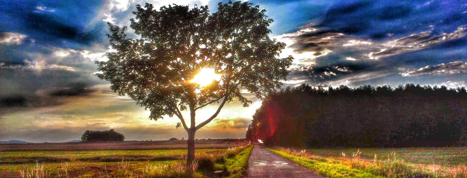 Vstříc lásce k běhání