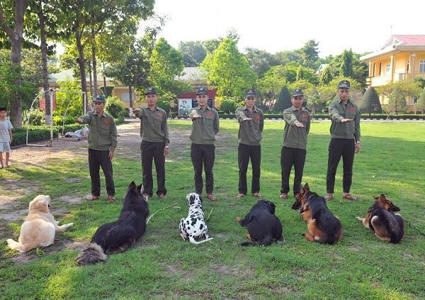 oàn Phát - Trung tâm huấn luyện chó ở Biên Hòa, Đồng Nai