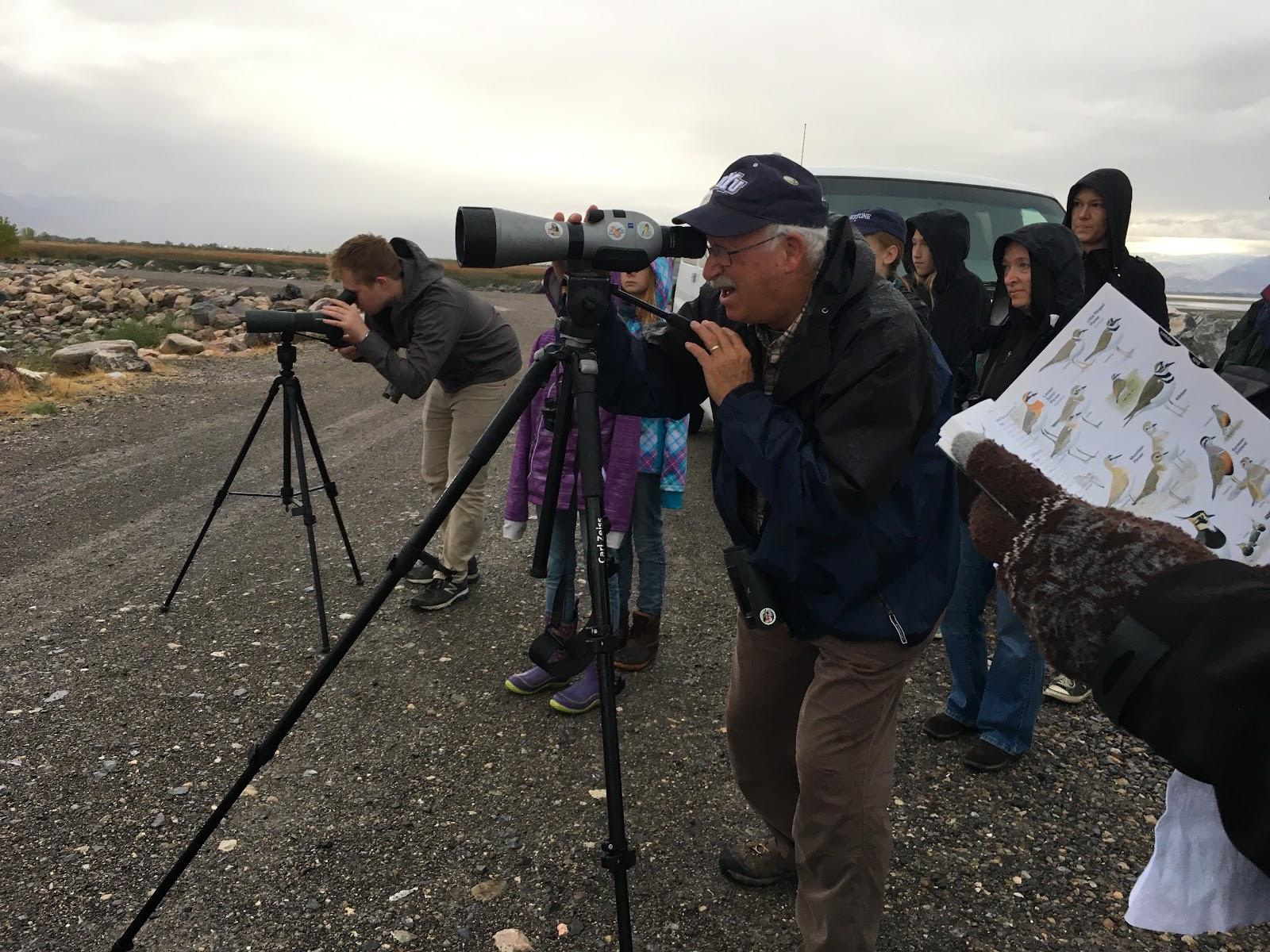 KBK Birding Pics - 20.jpg