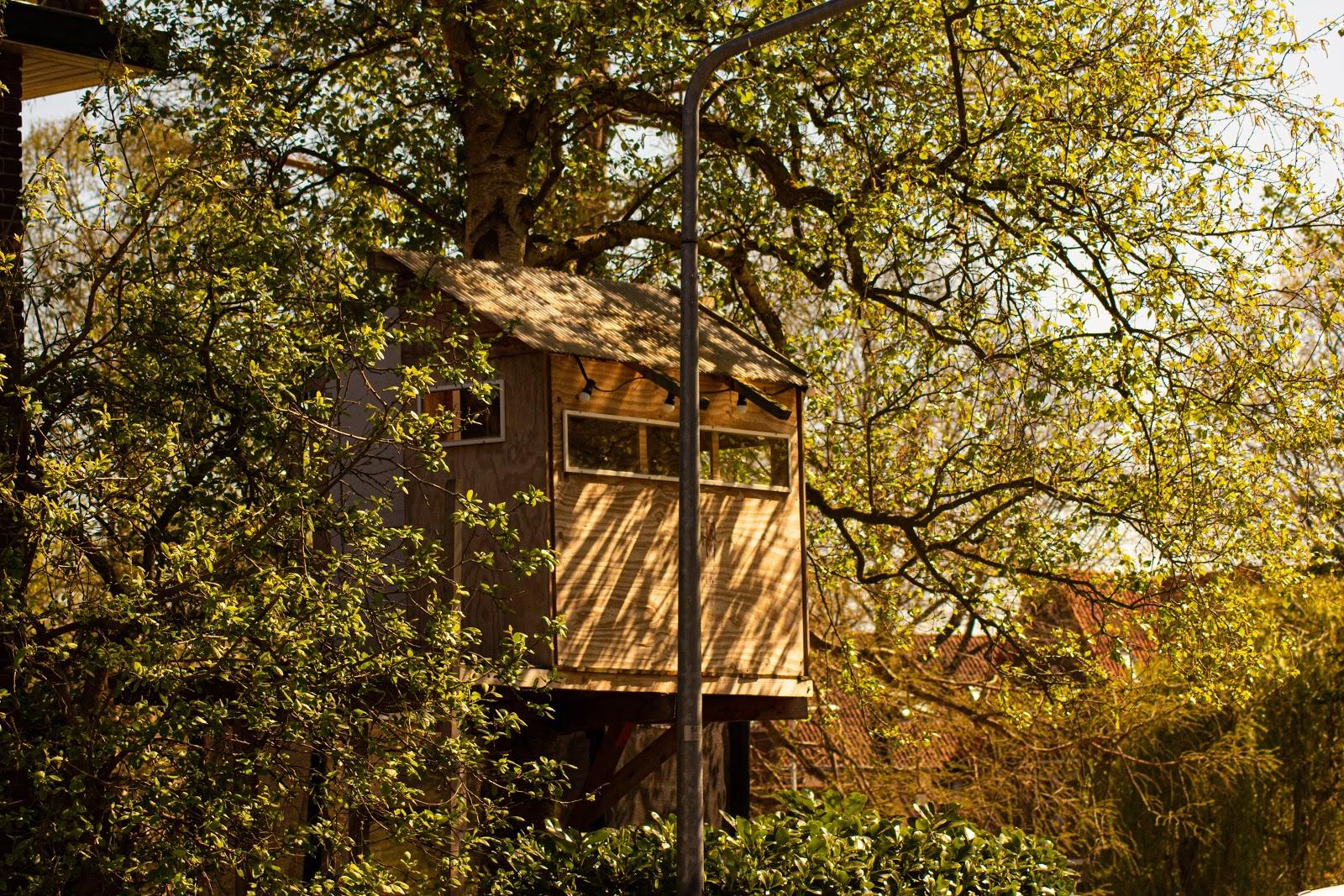 standard treehouse
