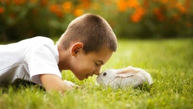 http://www.colitasdeamor.com/wp-content/uploads/conejos-y-ni%C3%B1os.jpg