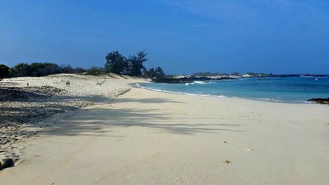 hawaii-beaches-makalawena.jpg