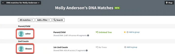 DNA matches in Ancestry.