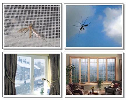 Các loại cửa lưới chống côn trùng giá rẻ
