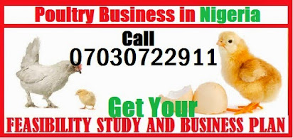 Business plan for poultry production pdf