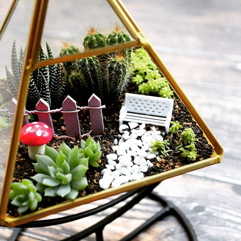月牙多肉三角玻璃屋
